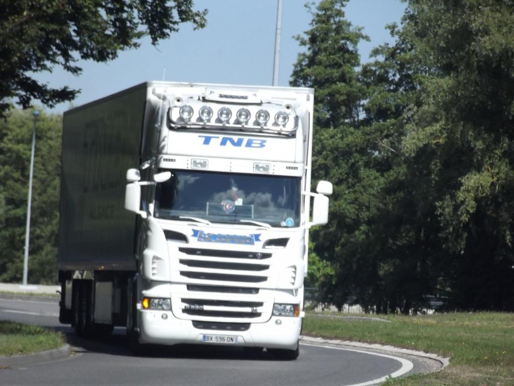 TNB Alsace (Transports Nicolas Baecker)(Weislingen, 67) Photo324
