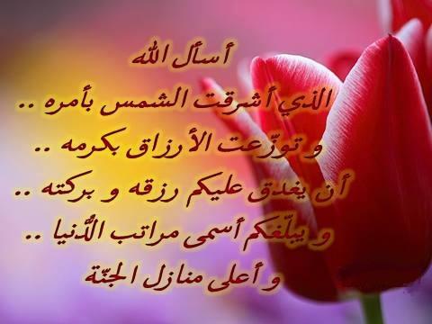 («۩۩ « اقتباسات  ايمانية  » ۩۩») - صفحة 19 13833310