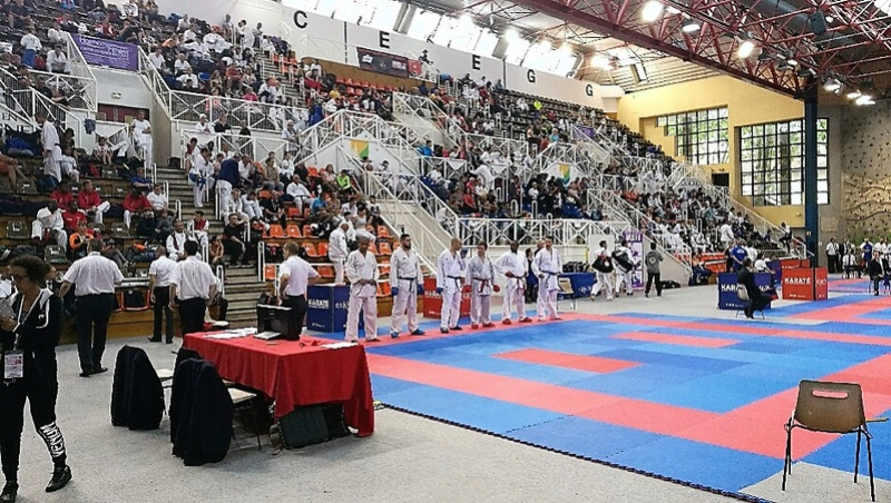 Coupe de France Corpo Combat/Kata 3 /4 juin 2017 Part_247