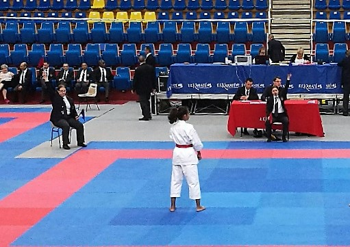 Coupe de France Corpo Combat/Kata 3 /4 juin 2017 Part_251