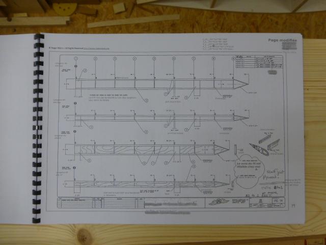 Pour m'envoyer en l'air, un bel oiseau biplan ! - Page 40 P1120212
