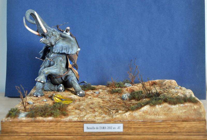 Bataille de Zama 202 av. JC Photos finales Dsc_0036