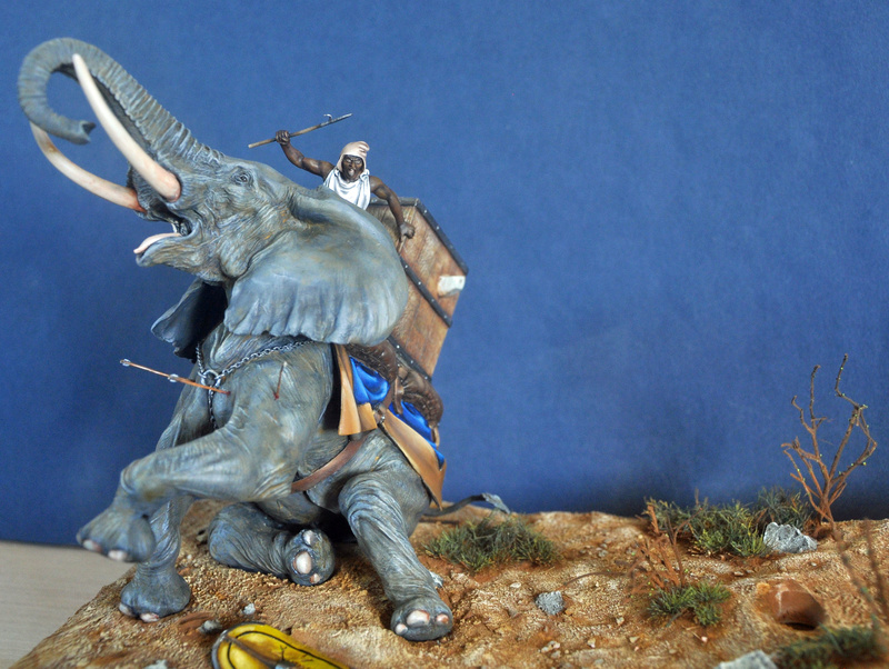 Bataille de Zama 202 av. JC Photos finales Dsc_0039