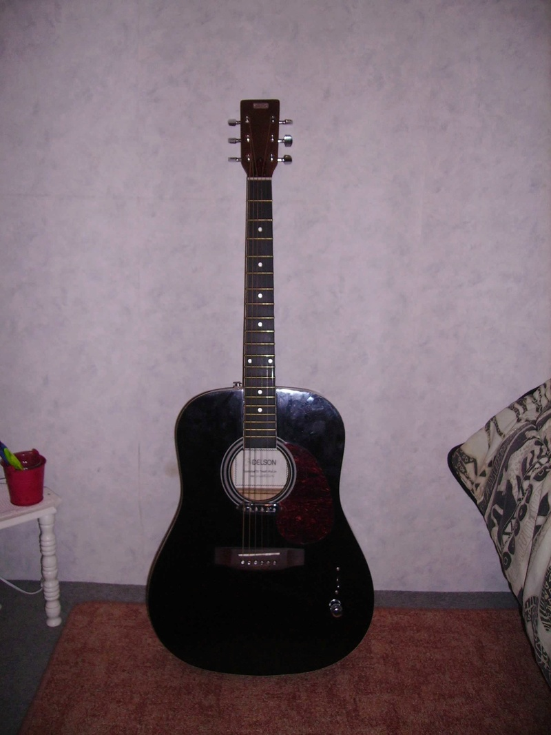 Fabrication d'une guitare à résonnateur Pict8611