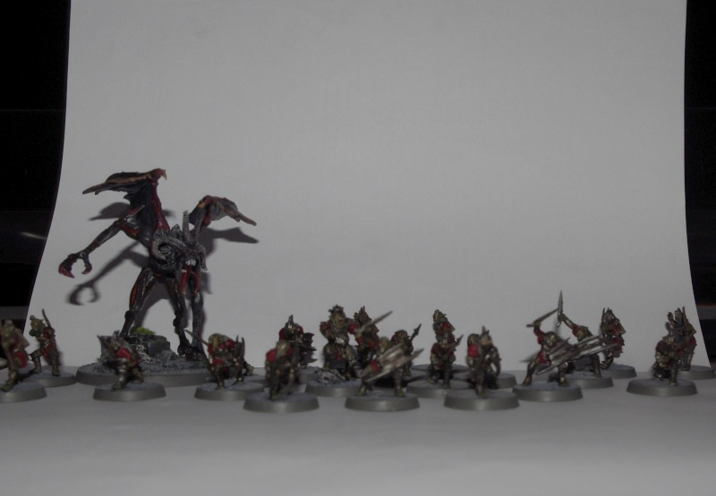 mine de la moria, figurines de la boite de base. _igp9412