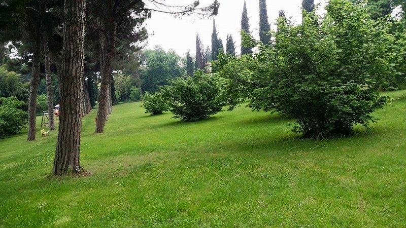 DOMENICA 02/07/2017 LOTUS-SPIEDO BRESCIANO IN FRANCIACORTA 17523611