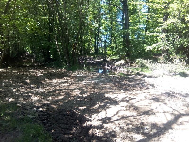 chantier journée des chemins du CODEVER la chapelle biche Img_2034
