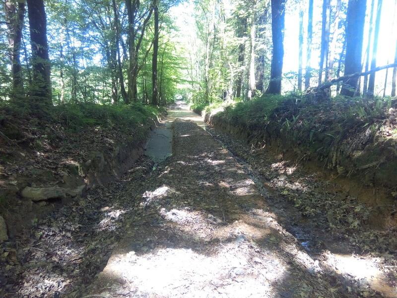 chantier journée des chemins du CODEVER la chapelle biche Img_2037