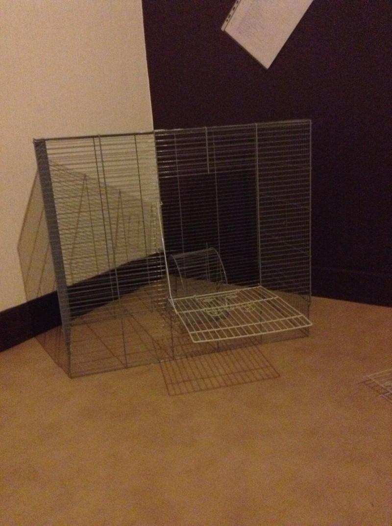Idée cage  Img_0214