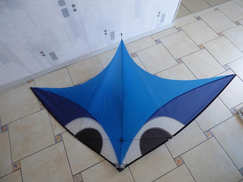 VENDU  AEROBE P1070412