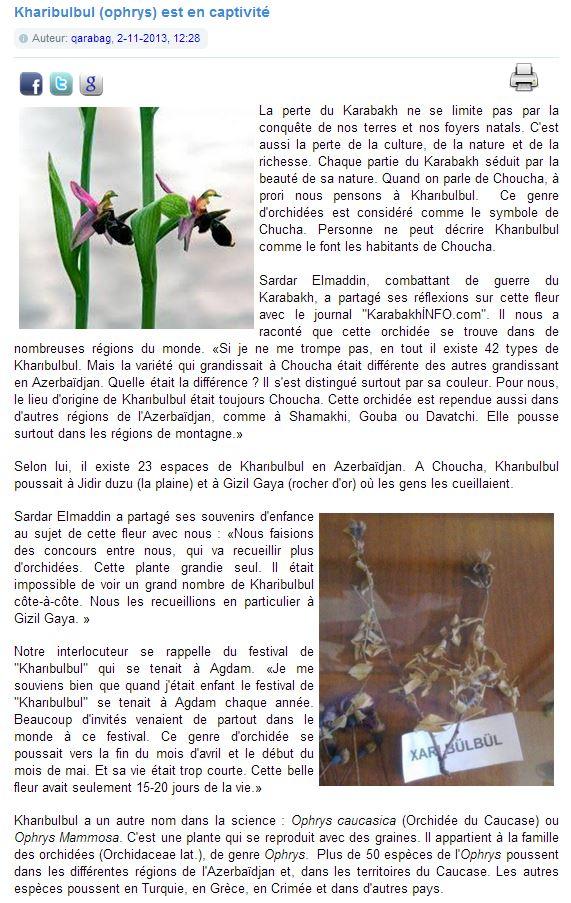 Amour, Guerre et Orchidées Kharib10