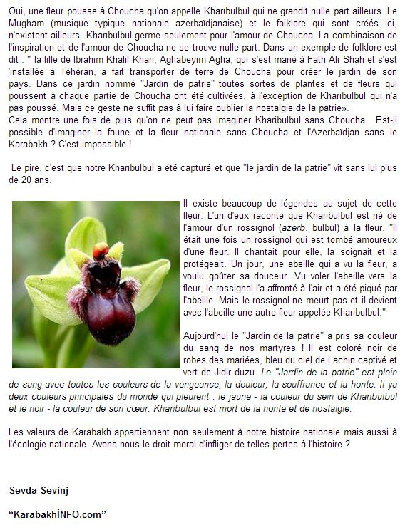 Amour, Guerre et Orchidées Kharib11