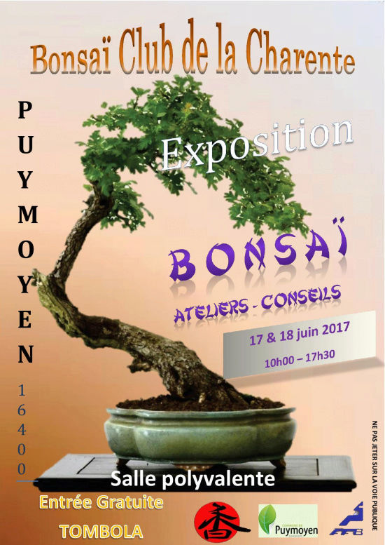 Expo Bonsaï Club de la Charente à PUYMOYEN Mini_a10