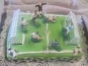 Gâteau anniversaire foot + photos. Img_1823