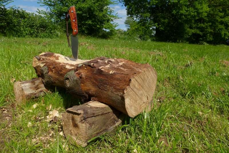 quelques trucs en bois d'arbre - Page 3 P1050026