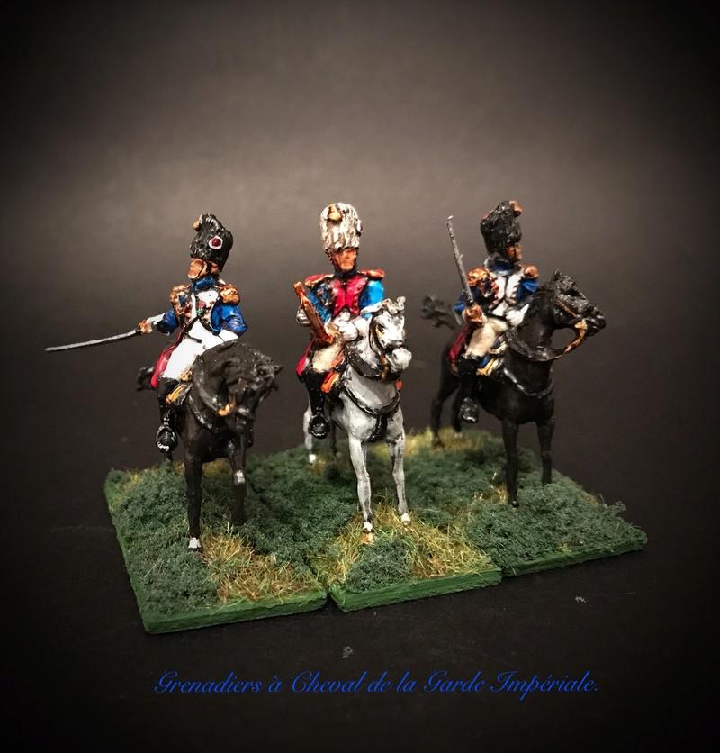 Colonel LEPIC [ NAPOLÉONFIGURINES ] + Grenadiers à cheval de la Garde [ HÄT 8013 ] au 1/72°. Image252