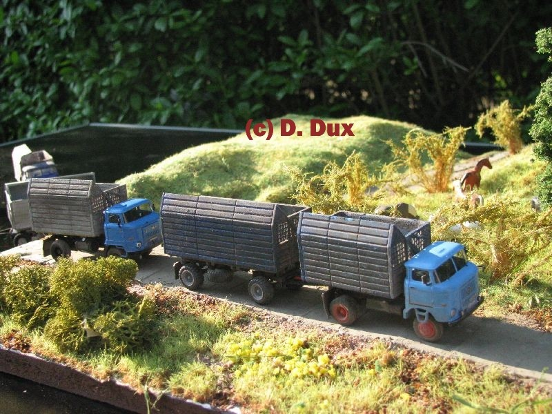 W 50 und L60 mit Schwerhäckselaufbau Sha2-016