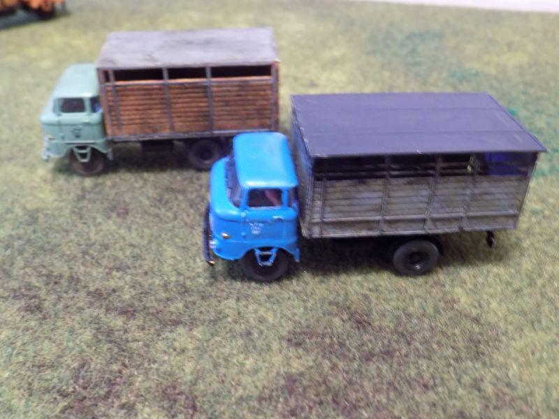 IFA W50 mit Viehaufbau Vieh2-12