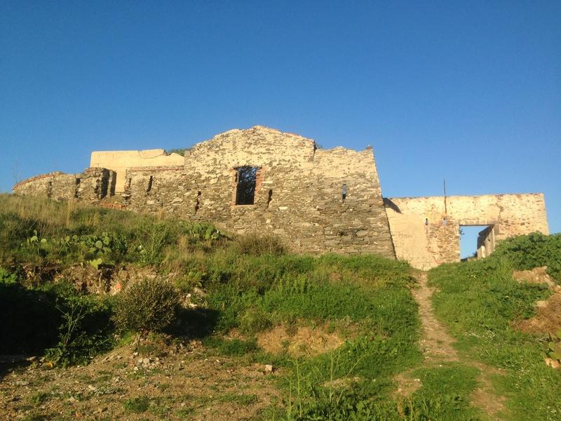 Südwall: Mittelmeerküstenfront  Img_0417