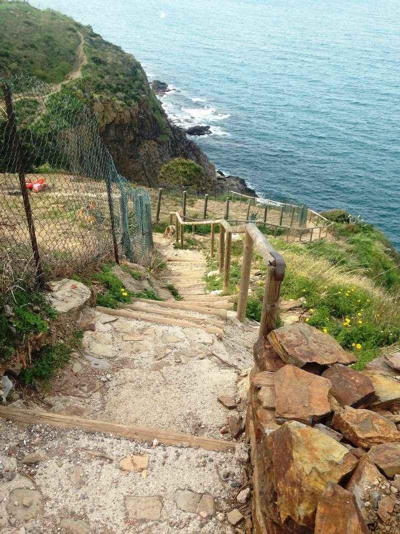 Südwall: Mittelmeerküstenfront  Img_0452