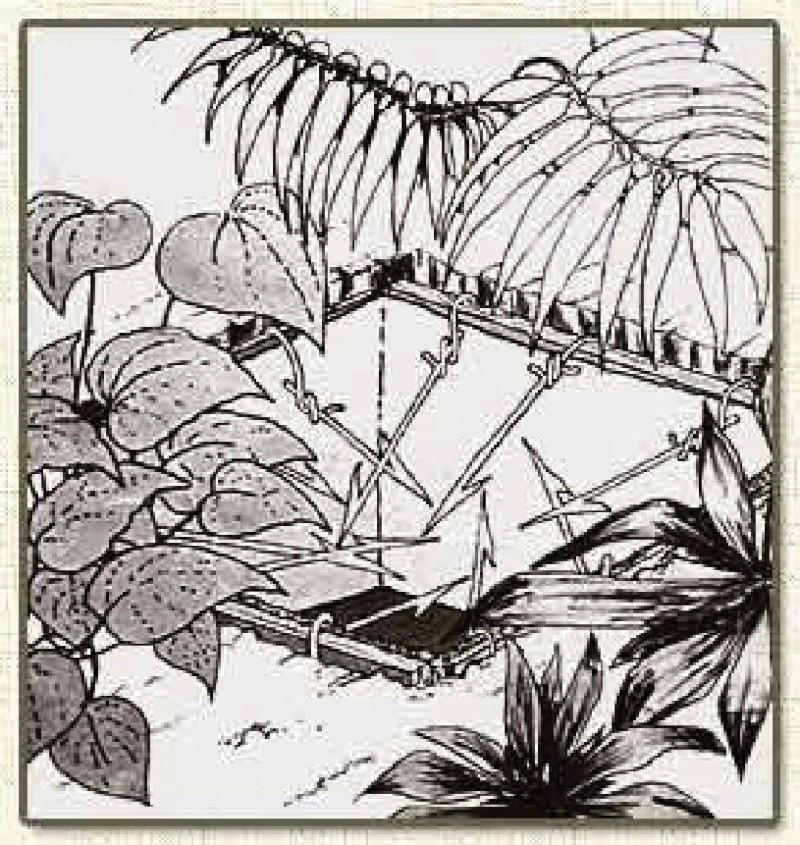Les pièges en bambou Vietcong (Booby traps) partie 1 Venust11