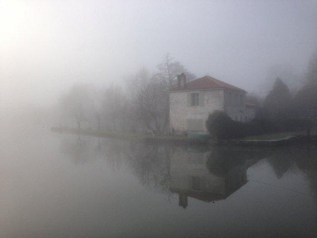 Le marais dans la brume... Photo_15