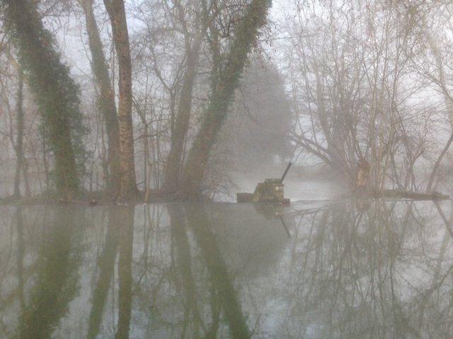 Le marais dans la brume... Photo_17