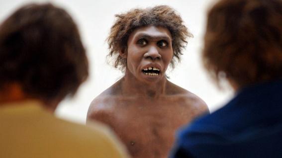 """Insolite : L'homme de Néandertal se soignait déjà à l'""""aspirine"""" 43b18610"""