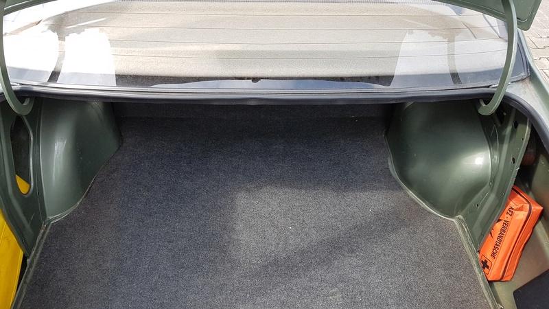 Grüne Motte Kadett E Stufe 20170515