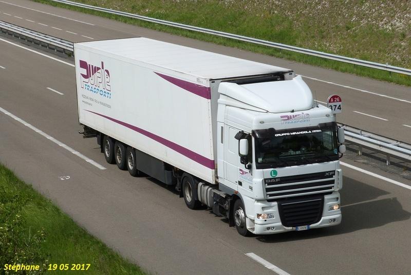 Purple Trasporti (Mozzecane) A_tri151