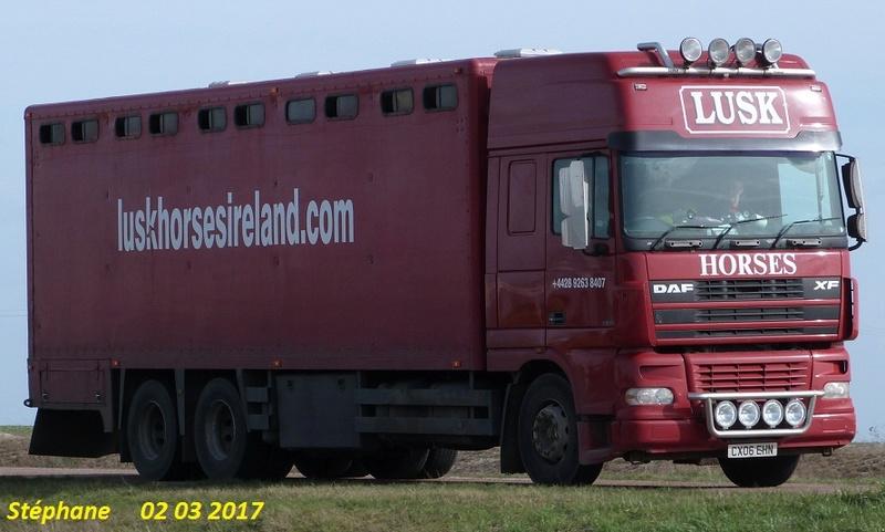 Transports de chevaux - Page 7 P1370612