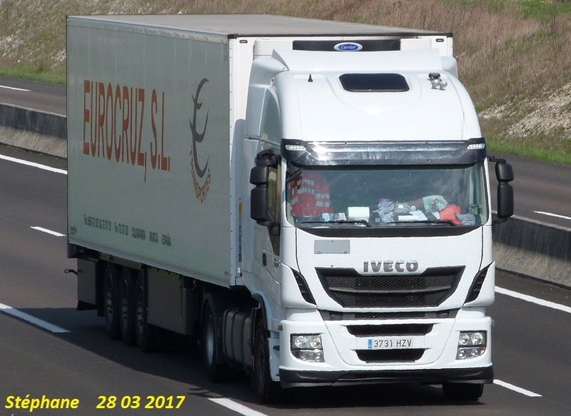 Eurocruz SL (Murcia) P1370942