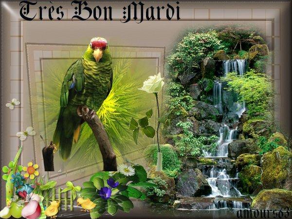 bonjour bonsoir du mois de mai  - Page 2 32637310