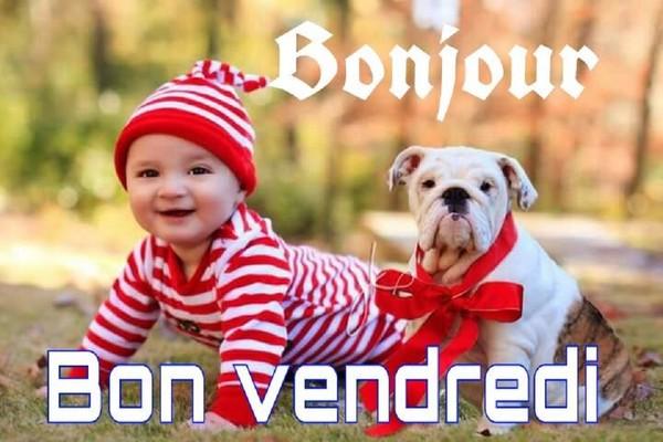 bonjour bonsoir du mois de mai  641d9d10