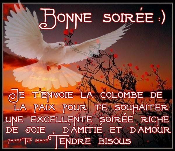 Bonjour / bonsoir du mois de juin - Page 2 7e018810