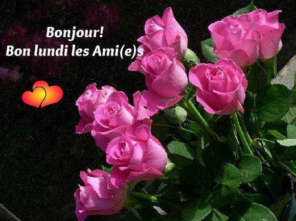bonjour bonsoir du mois de mai  81201010