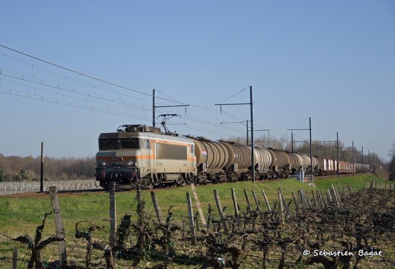 Photos et vidéos de la ligne Bordeaux - Toulouse - Narbonne - Sète (Fil 3) - Page 4 _dsc7113