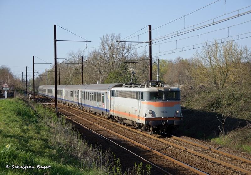 Photos et vidéos de la ligne Bordeaux - Toulouse - Narbonne - Sète (Fil 3) - Page 6 Ter_8611