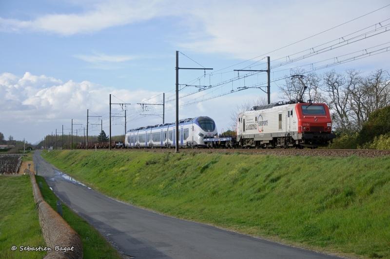Photos et vidéos de la ligne Bordeaux - Toulouse - Narbonne - Sète (Fil 3) - Page 7 Train_10