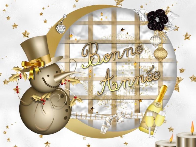 Nos meilleurs vœux pour la nouvelle année. Bonnea10