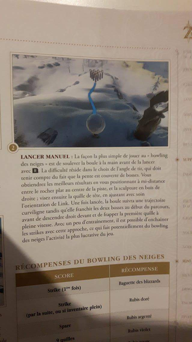 ZELDA BREATH OF THE WILD - TOPIC OFFICIEL - Page 4 Receiv13