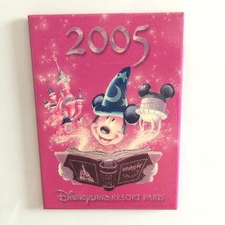 Nos Magnets Disney Img_5221