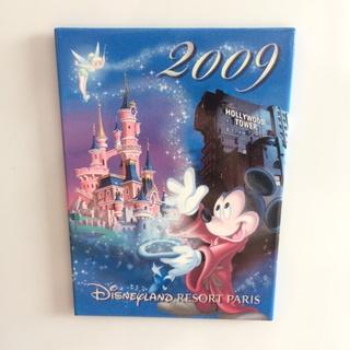 Nos Magnets Disney Img_5230