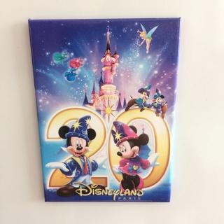 Nos Magnets Disney Img_5231