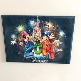 Nos Magnets Disney Img_5238