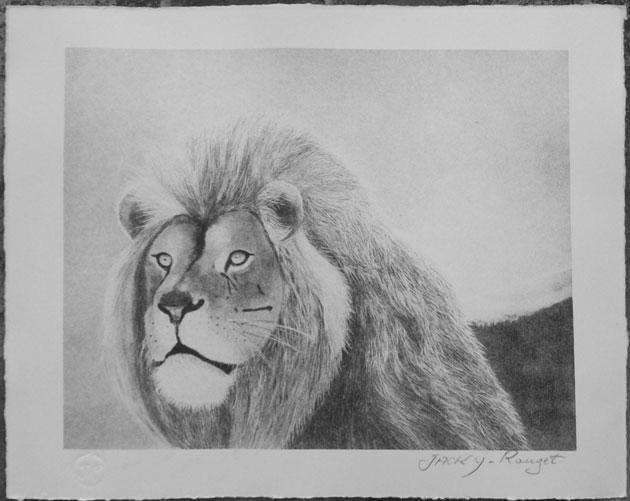 BESOIN D'AIDE IMPRESSION LITHO PLAQUE OFFSET Lion-a10