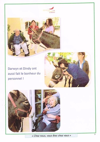 Visites avec mes ânes !  Journa13