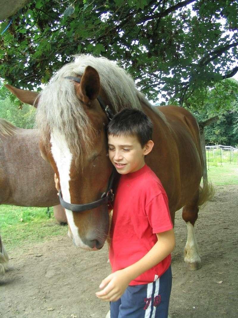 Thème de décembre : les chevaux et les enfants - Page 2 Fauvet10