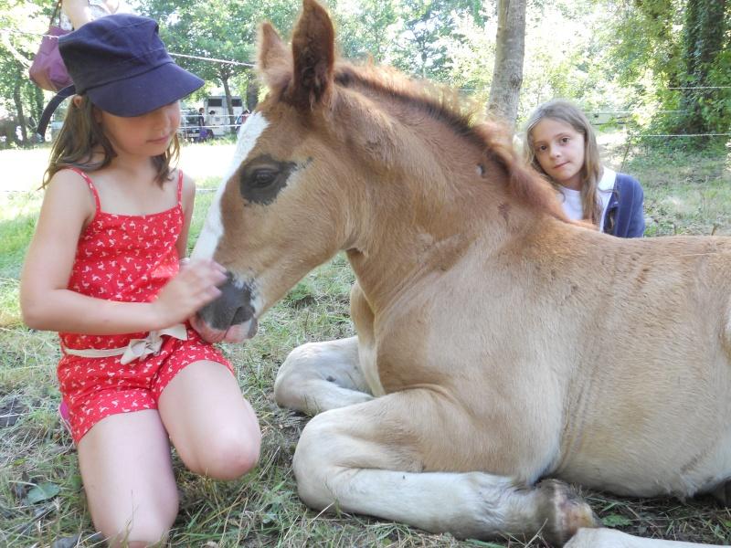 Thème de décembre : les chevaux et les enfants - Page 2 Photo_27