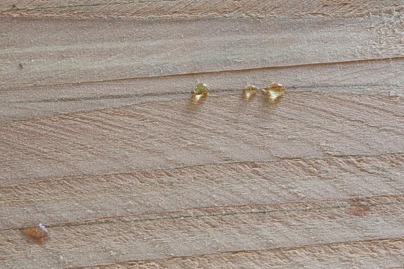[Fabrication] Jardinières en Douglas. 20_mai11